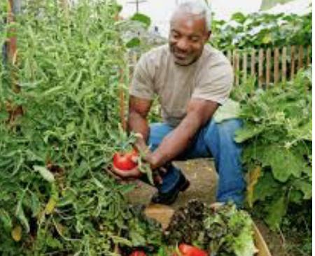 black man working in garden